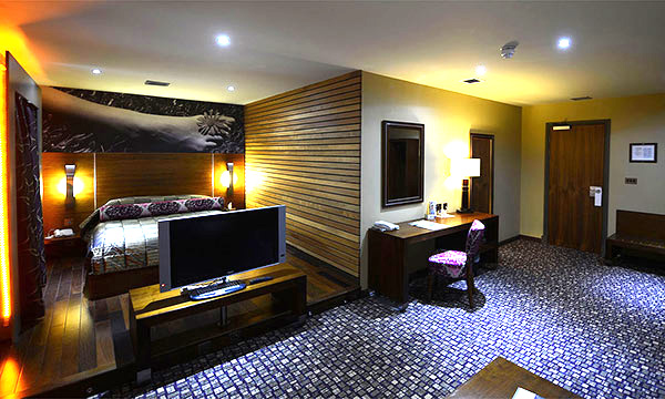 Luxury contemporary suite - Room 501
