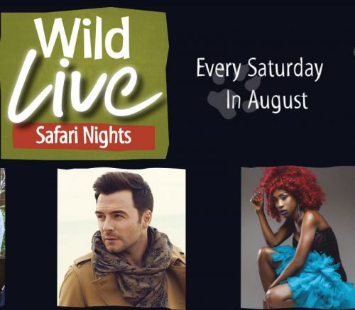 Wild Live Safari Nights 2018